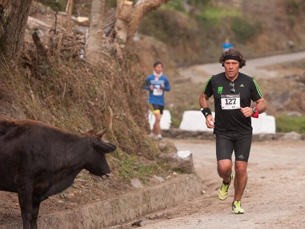 In 2014 toe Louis nog in Katar gewoon het, is hy genooi as deel van 'n groep avontuur-atlete om in die geslote Koninkrykie van Bhoetan in die Himalaya-gebergtes 'n maraton te gaan hardloop.